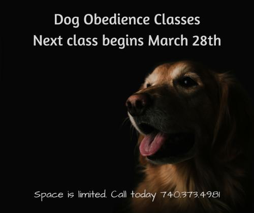 Dog Obedience ClassesStarting January 10th (1)